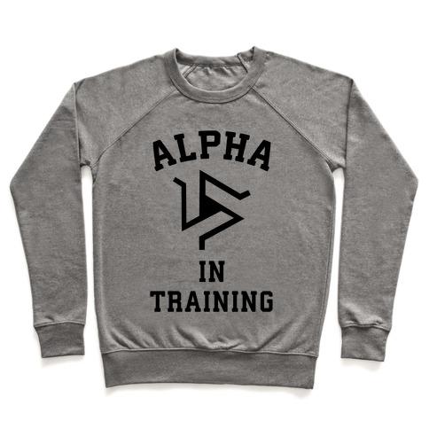 Alpha In Training Pullover