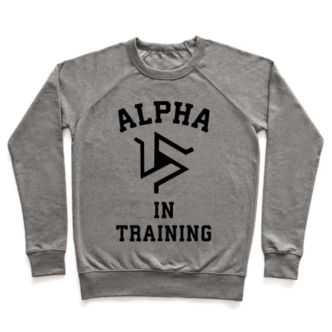 Alpha In Training Pullover