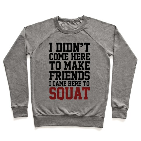 I Didn't Come Here To Make Friends, I Came Here To Squat Pullover