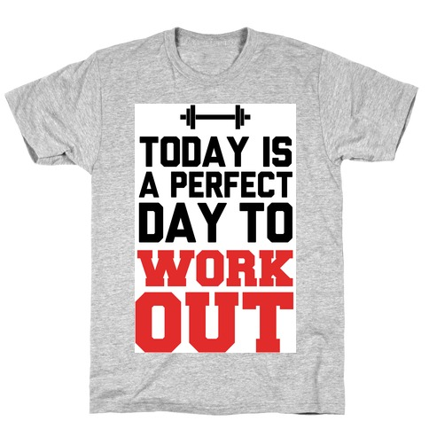 Today Is a Perfect Day to Work Out T-Shirt