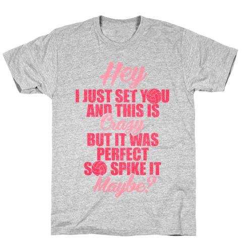 Hey I Just Set You T-Shirt