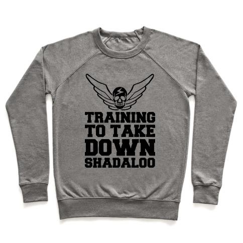 Training To Take Down Shadaloo Pullover