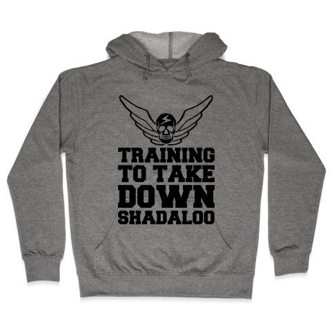 Training To Take Down Shadaloo Hooded Sweatshirt