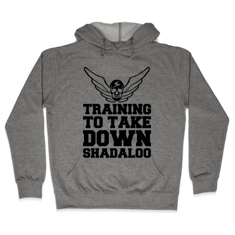 Training To Take Down Shadaloo Hooded Sweatshirt