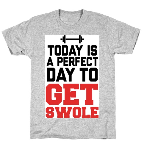 Today Is a Perfect Day to Get Swole Mens/Unisex T-Shirt