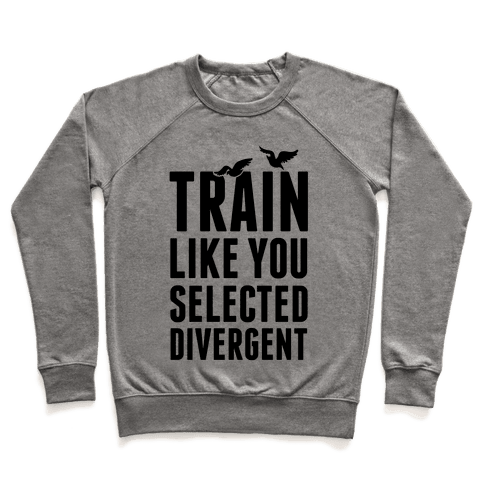 Train Like You Selected Divergent Pullover