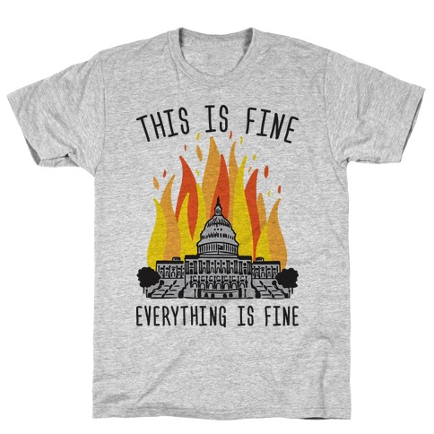 This Is Fine Everything Is Fine U.S. Capitol T-Shirt