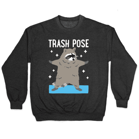 Trash Pose Raccoon Pullover