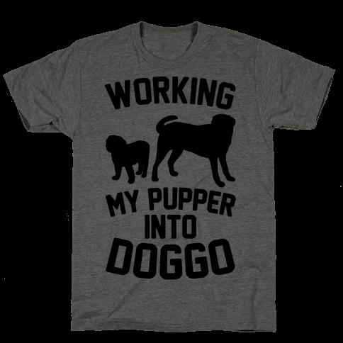 Working My Pupper Into Doggo