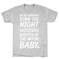 We're Burning Down The Night Shooting Bullets At The Moon Baby