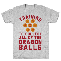 Training To Collect All Of The Dragon Balls