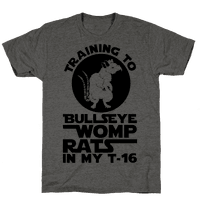 Training To Bullseye Womp Rats