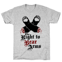 Right To Bear Arms (Political)