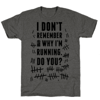 I Don't Remember Why I'm Running Do You?