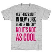 There's Stuff In New York Besides The City